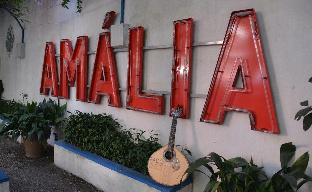 Tours to Amália's Garden