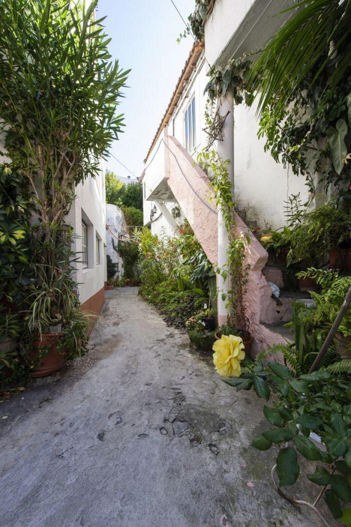 Pátio do João e da Teresa | Rua Nova da Piedade 60