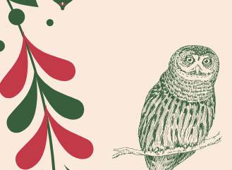 Feira do Mocho de Natal